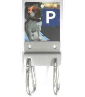 DOG PARKING COLLIE